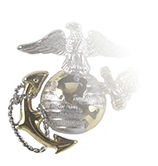 ARMY CSIB BADGE